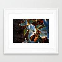 Desert Leaves II Framed Art Print