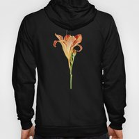 Orange Daylily Illustration Hoody