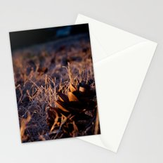 Fall Cones Stationery Cards