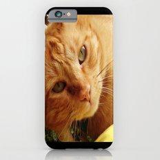 Chester iPhone 6 Slim Case