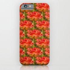Roses Galore Slim Case iPhone 6s