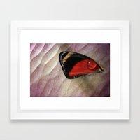 Wing Drop Framed Art Print