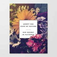 The Pace Of Nature Canvas Print