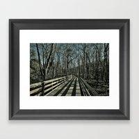 Trail Framed Art Print
