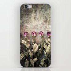 Five dried roses iPhone & iPod Skin