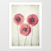 Art Prints featuring Vintage Poppies  by Maria Heyens