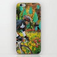 Through The Tulips iPhone & iPod Skin