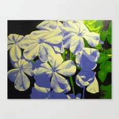 Bursting Bloom Canvas Print
