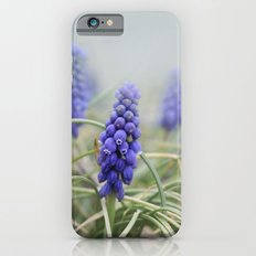 Morning's Silence iPhone 6s Slim Case