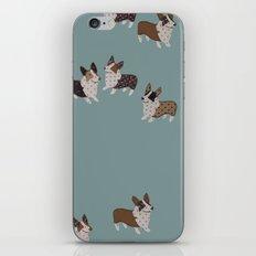 teal corgis iPhone & iPod Skin