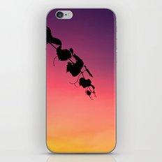 Sunset #3 iPhone & iPod Skin