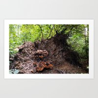 Transience in the Forest 3 Art Print