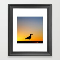 Seagull Sunset Framed Art Print