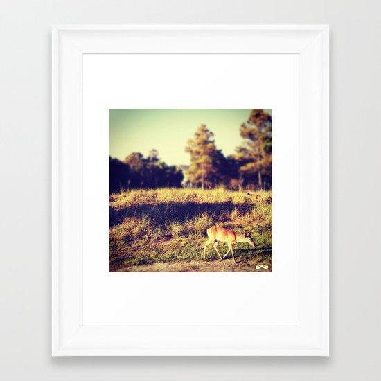 Ever Watchful. Framed Art Print