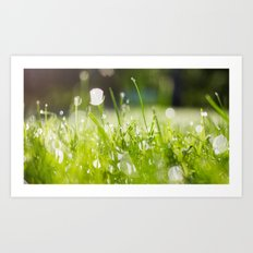 grassy morning Art Print