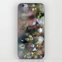 Macro Moss iPhone & iPod Skin