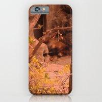 iPhone & iPod Case featuring Yoghi by Giorgia Giorgi