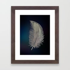 Swan Feather Framed Art Print