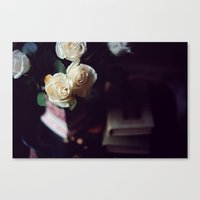 i'd rather have roses Canvas Print