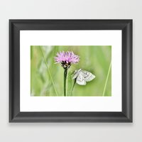 In My Little World Framed Art Print