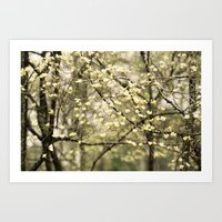 Let's Get Lost In The Dogwoods Art Print