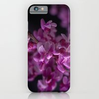 iPhone & iPod Case featuring Red Bud Blossoms  by Rick Kirby