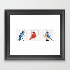 Birds of Ohio Framed Art Print