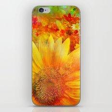 Tournesol iPhone & iPod Skin