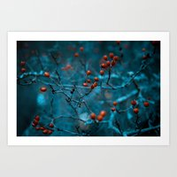 Winter Blue Art Print