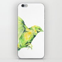 Bird, Sparrow iPhone & iPod Skin