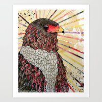 Bateleur Eagle Art Print