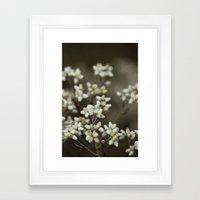 little white flowers. Framed Art Print