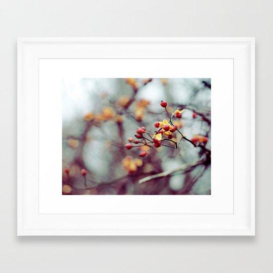 Frozen Fruit Framed Art Print