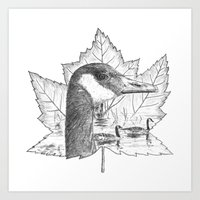 Canada Goose on Maple Leaf Art Print