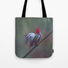 Ready for take off Tote Bag