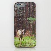 deer 2.  iPhone 6 Slim Case