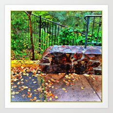 Spring down the canyon , Fall in the parking lot Art Print