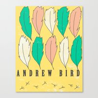 Andrew Bird 'Feathers' Canvas Print