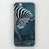 blue zebra iPhone & iPod Skin