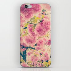 Sweet Pink Pompom Blossoms of Yaezakura Cherry -- Spring Botanical in Vintage Tones iPhone & iPod Skin