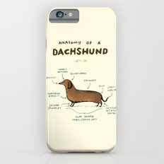 Anatomy Of A Dachshund iPhone 6 Slim Case