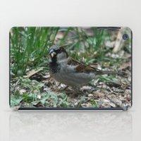 House Sparrow iPad Case