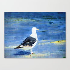 Seagull on Beach Canvas Print