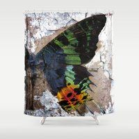 Sunset Moth Wing Abstract Shower Curtain