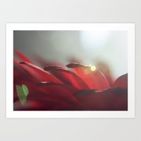Drops of Light Art Print