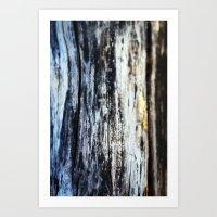 Damp on Wood Art Print