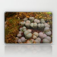 Cactus Stones Laptop & iPad Skin