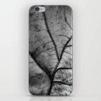 'Nature Network' iPhone & iPod Skin