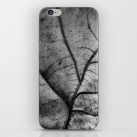 'Nature Network' iPhone & iPod Skin