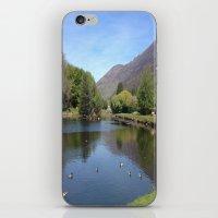 Duckpond iPhone & iPod Skin